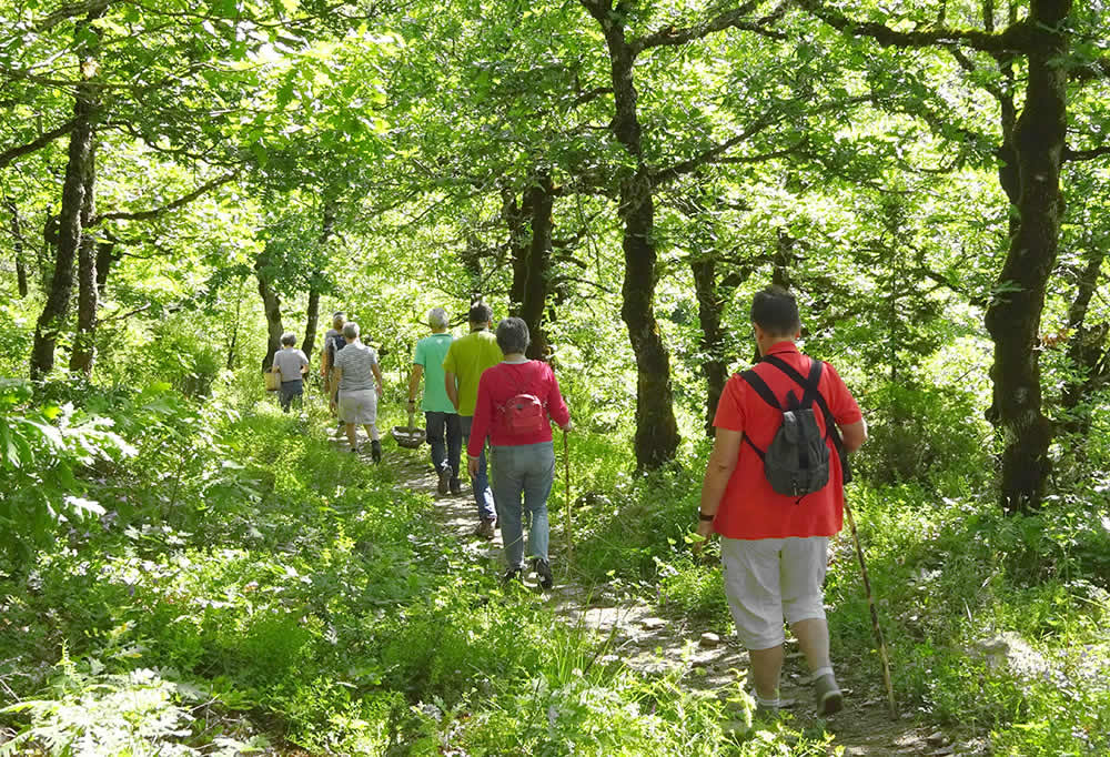 Active excursions at the hotel Porfyron in the Zagori region. Especially for people from whom coming to rest and relaxation also means healthy and adventurous activities, Hotel Porfyron offers several possibilities for a day of adventure, in collaboration with professional friends from the area