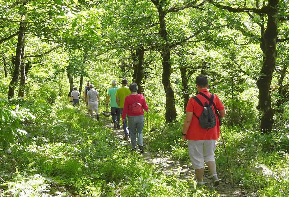 Porfyron Hotel biedt in samenwerking met professionele trekking gidsen van het gebied meerdere alternatieven voor een dag vol avontuur in de aard van Zagori