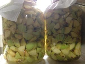 Vandaag het recept voor appelazijn. Heel erg gezond en voor van alles te gebruiken